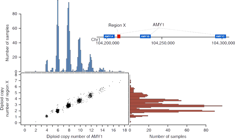 Figure: Properties of genomic variation discovered in 1KJPN.