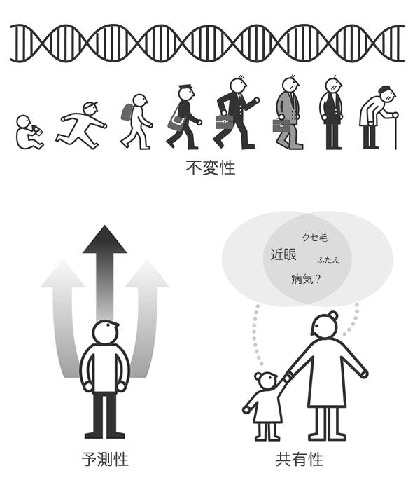 遺伝情報不変性予測性共有性