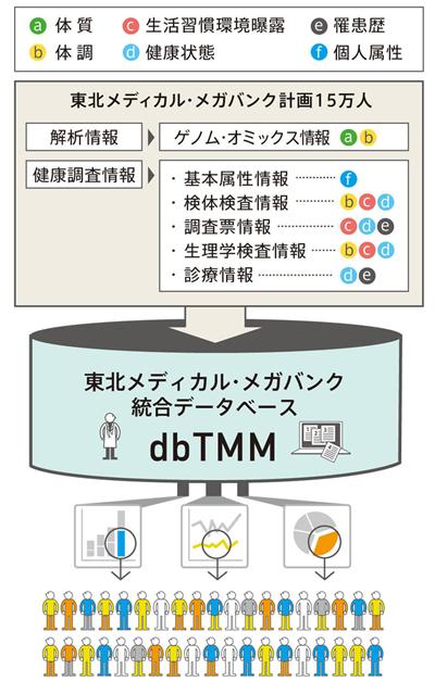 dbTMM
